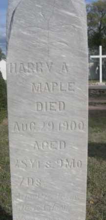 MAPLE, HARRY A. - Dawes County, Nebraska | HARRY A. MAPLE - Nebraska Gravestone Photos