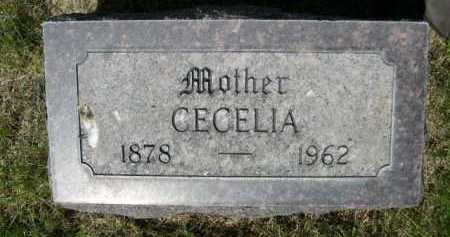 MARRIOTT, CECELIA - Dawes County, Nebraska   CECELIA MARRIOTT - Nebraska Gravestone Photos