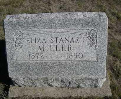 MILLER, ELIZA - Dawes County, Nebraska | ELIZA MILLER - Nebraska Gravestone Photos