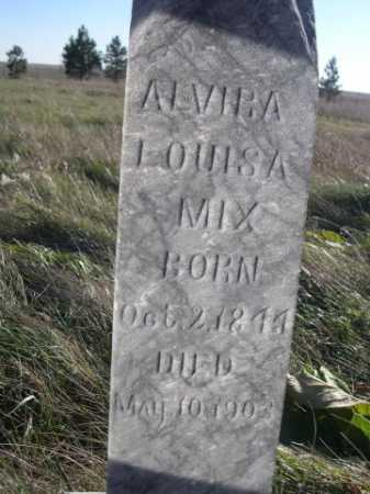 MIX, ALVIRA LOUISA - Dawes County, Nebraska | ALVIRA LOUISA MIX - Nebraska Gravestone Photos