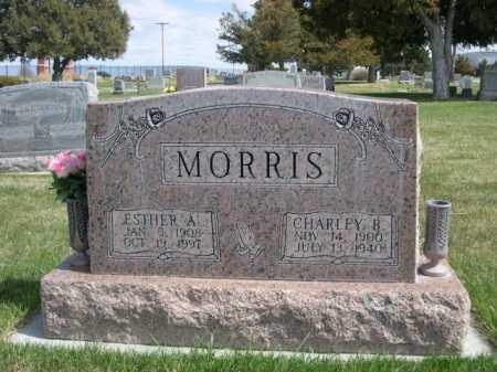 MORRIS, ESTER A. - Dawes County, Nebraska | ESTER A. MORRIS - Nebraska Gravestone Photos