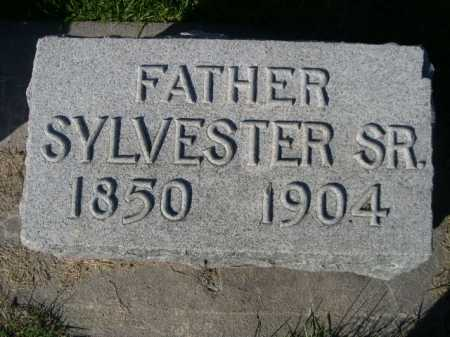 MULDOON, SYLVESTER SR. - Dawes County, Nebraska | SYLVESTER SR. MULDOON - Nebraska Gravestone Photos