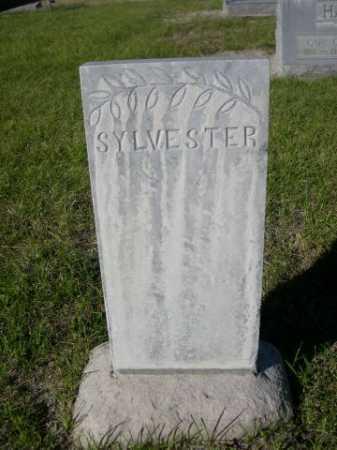 MULDOON, SYLVESTER - Dawes County, Nebraska | SYLVESTER MULDOON - Nebraska Gravestone Photos