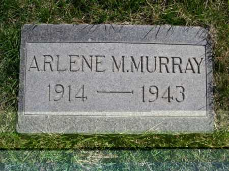 MURRAY, ARLENE M. - Dawes County, Nebraska | ARLENE M. MURRAY - Nebraska Gravestone Photos