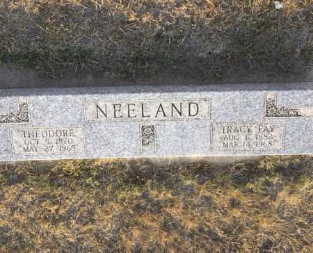 NEELAND, TRACY FAY - Dawes County, Nebraska | TRACY FAY NEELAND - Nebraska Gravestone Photos