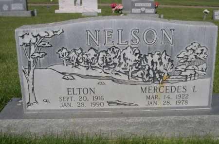 NELSON, ELTON - Dawes County, Nebraska | ELTON NELSON - Nebraska Gravestone Photos