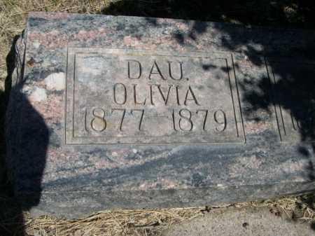NELSON, OLIVIA - Dawes County, Nebraska | OLIVIA NELSON - Nebraska Gravestone Photos