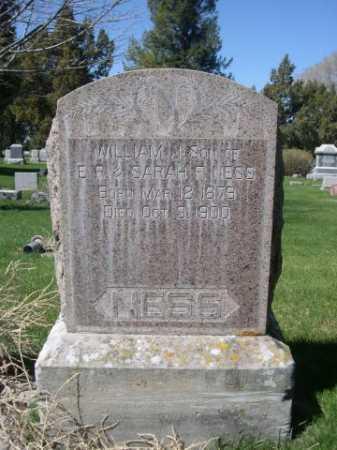 NESS, WILLIAM J. - Dawes County, Nebraska | WILLIAM J. NESS - Nebraska Gravestone Photos