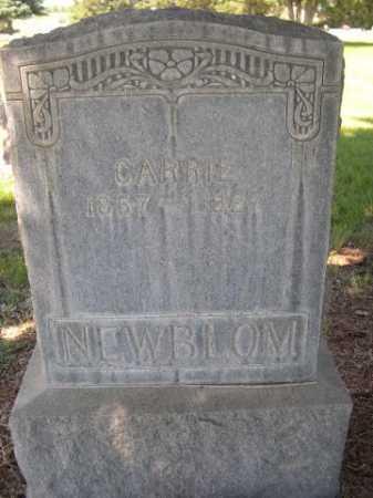 NEWBLOM, CARRIE - Dawes County, Nebraska | CARRIE NEWBLOM - Nebraska Gravestone Photos