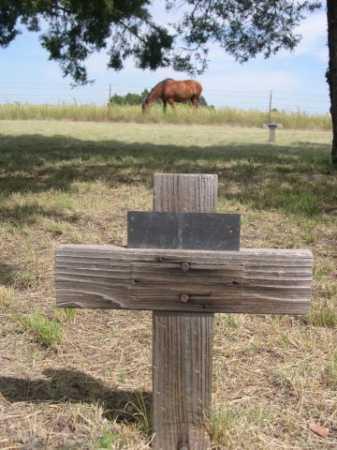 NORMAN, DORTHY M. - Dawes County, Nebraska | DORTHY M. NORMAN - Nebraska Gravestone Photos