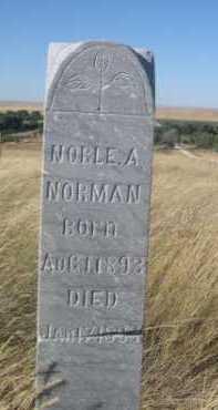 NORMAN, NOBLE A. - Dawes County, Nebraska   NOBLE A. NORMAN - Nebraska Gravestone Photos