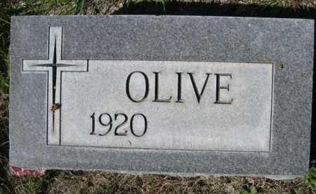 RABIN, OLIVE - Dawes County, Nebraska | OLIVE RABIN - Nebraska Gravestone Photos