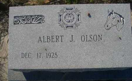 OLSON, ALBERT J. - Dawes County, Nebraska | ALBERT J. OLSON - Nebraska Gravestone Photos