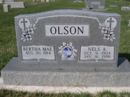 OLSON, BERTHA MAE - Dawes County, Nebraska | BERTHA MAE OLSON - Nebraska Gravestone Photos