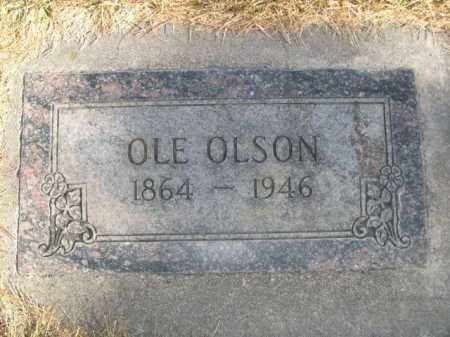 OLSON, OLE - Dawes County, Nebraska | OLE OLSON - Nebraska Gravestone Photos