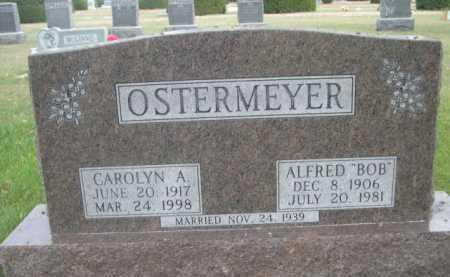 OSTERMEYER, CAROLYN A. - Dawes County, Nebraska | CAROLYN A. OSTERMEYER - Nebraska Gravestone Photos