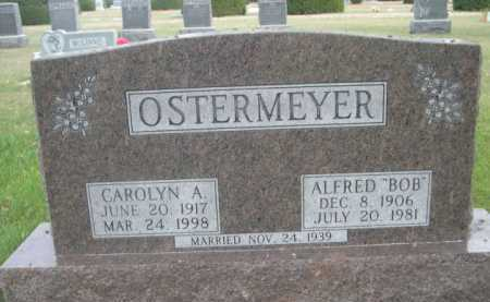 OSTERMEYER, CAROLYN A. - Dawes County, Nebraska | CAROLYN A. OSTERMEYER - Nebraska Gravestone Photos
