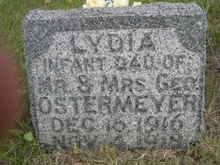 OSTERMEYER, LYDIA - Dawes County, Nebraska   LYDIA OSTERMEYER - Nebraska Gravestone Photos
