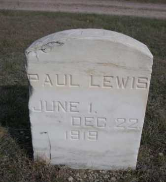 PAUL, LEWIS - Dawes County, Nebraska | LEWIS PAUL - Nebraska Gravestone Photos