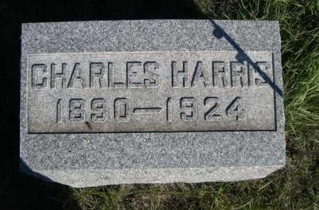 REED, CHARLES HARRIS - Dawes County, Nebraska | CHARLES HARRIS REED - Nebraska Gravestone Photos