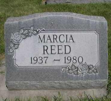 REED, MARCIA - Dawes County, Nebraska | MARCIA REED - Nebraska Gravestone Photos