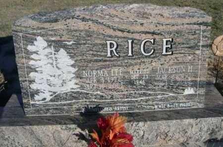 RICE, JACKSON H. - Dawes County, Nebraska | JACKSON H. RICE - Nebraska Gravestone Photos
