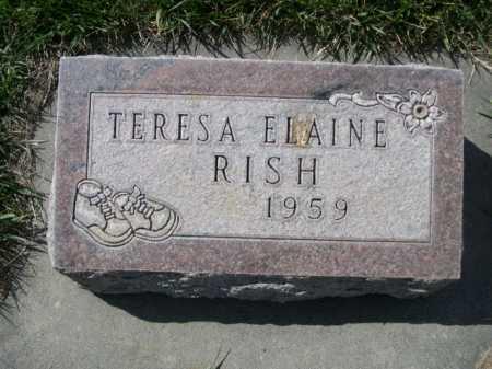 RISH, TERESA ELAINE - Dawes County, Nebraska | TERESA ELAINE RISH - Nebraska Gravestone Photos
