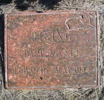 RISING, DARLENE SUE - Dawes County, Nebraska | DARLENE SUE RISING - Nebraska Gravestone Photos