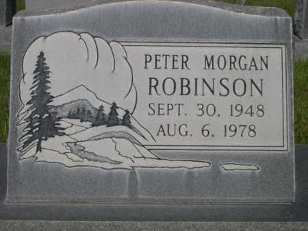 ROBINSON, PETER MORGAN - Dawes County, Nebraska | PETER MORGAN ROBINSON - Nebraska Gravestone Photos