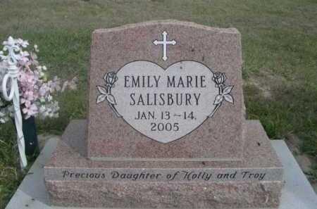 SALSBURY, EMILY MARIE - Dawes County, Nebraska | EMILY MARIE SALSBURY - Nebraska Gravestone Photos