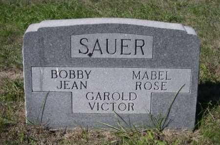 SAUER, MABEL ROSE - Dawes County, Nebraska | MABEL ROSE SAUER - Nebraska Gravestone Photos