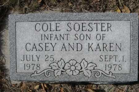 SOESTER, COLE - Dawes County, Nebraska | COLE SOESTER - Nebraska Gravestone Photos