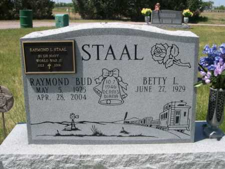STAAL, BETTY L. - Dawes County, Nebraska | BETTY L. STAAL - Nebraska Gravestone Photos