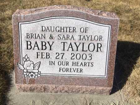 TAYLOR, BABY DAUGHTER OF BRIAN & SARA - Dawes County, Nebraska | BABY DAUGHTER OF BRIAN & SARA TAYLOR - Nebraska Gravestone Photos