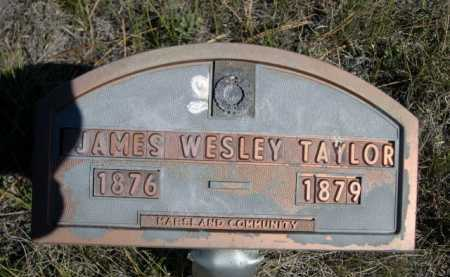 TAYLOR, JAMES WESLEY - Dawes County, Nebraska | JAMES WESLEY TAYLOR - Nebraska Gravestone Photos