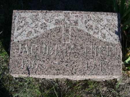 THEIN, JACOBINA - Dawes County, Nebraska | JACOBINA THEIN - Nebraska Gravestone Photos