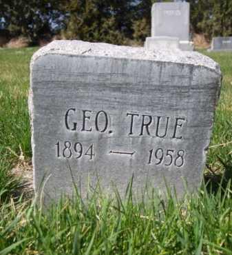 TRUE, GEO. - Dawes County, Nebraska | GEO. TRUE - Nebraska Gravestone Photos