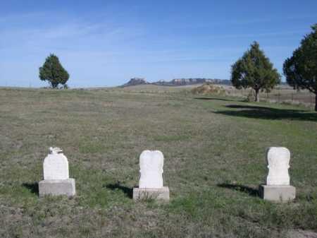 VAN TREECK, THREE BABIES - Dawes County, Nebraska | THREE BABIES VAN TREECK - Nebraska Gravestone Photos