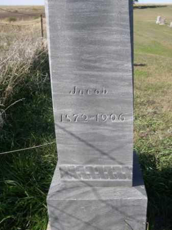 VAN TREEK, JACOB - Dawes County, Nebraska | JACOB VAN TREEK - Nebraska Gravestone Photos