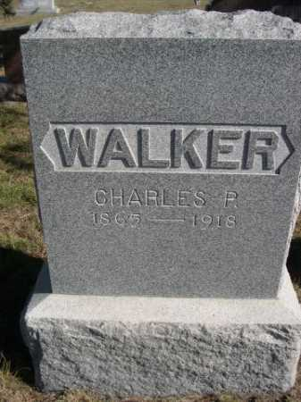 WALKER, CHARLES P. - Dawes County, Nebraska | CHARLES P. WALKER - Nebraska Gravestone Photos