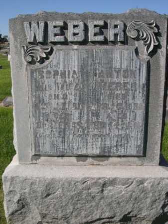 WEBER, SOPHIA - Dawes County, Nebraska | SOPHIA WEBER - Nebraska Gravestone Photos