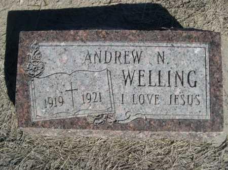 WELLING, ANDREW N. - Dawes County, Nebraska | ANDREW N. WELLING - Nebraska Gravestone Photos