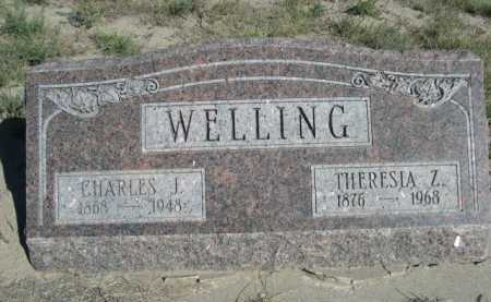 WELLING, THERESIA Z. - Dawes County, Nebraska | THERESIA Z. WELLING - Nebraska Gravestone Photos