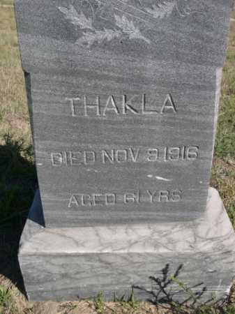 WELLING, THAKLA - Dawes County, Nebraska   THAKLA WELLING - Nebraska Gravestone Photos