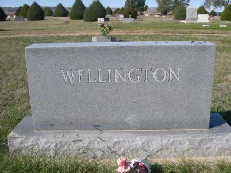 WELLINGTON, FAMILY - Dawes County, Nebraska | FAMILY WELLINGTON - Nebraska Gravestone Photos