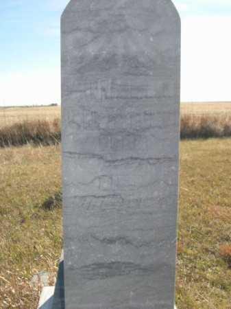 WHETSTONE, WILLIAM J. - Dawes County, Nebraska | WILLIAM J. WHETSTONE - Nebraska Gravestone Photos