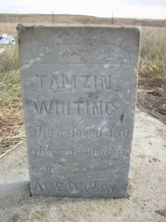 WHITING, TAMZIN - Dawes County, Nebraska | TAMZIN WHITING - Nebraska Gravestone Photos