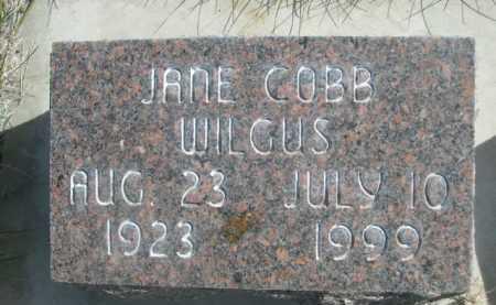 COBB WILGUS, JANE - Dawes County, Nebraska | JANE COBB WILGUS - Nebraska Gravestone Photos