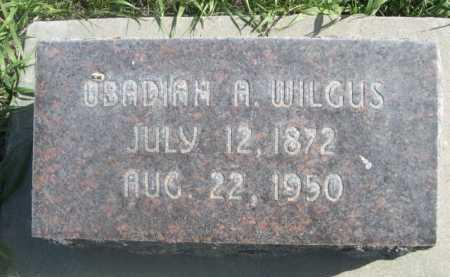 WILGUS, OBADIAH A. - Dawes County, Nebraska | OBADIAH A. WILGUS - Nebraska Gravestone Photos