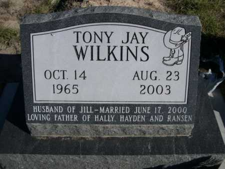 WILKINS, TONY JAY - Dawes County, Nebraska | TONY JAY WILKINS - Nebraska Gravestone Photos